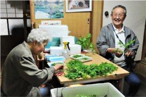 愿景/日本上胜町不怕老从工作找价值更幸福