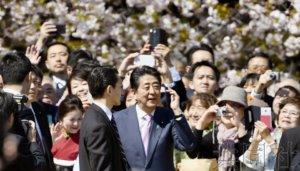 """日本政府拟从后年起对""""赏樱会""""宾客实施减半"""