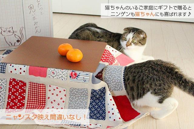 【12月13日発売】 『猫と、こたつと、思い出みかん。』日本初 猫専用こたつ付(段ボール製) 和歌山ミカン5kg入セット (保護猫活動 有田みかん 天田・土生。ねこ 猫 こたつ みかん) | その他/限定食材,和歌山みかん チキンナカタHPから引用
