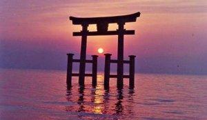 鸟居中的日出:滋贺县白须神社
