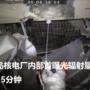 影/福岛核电厂内部首曝光辐射量太高只能待15分钟