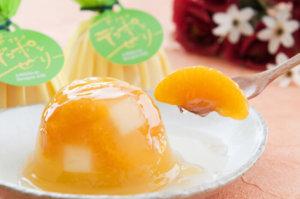 芦北凸顶柑果冻