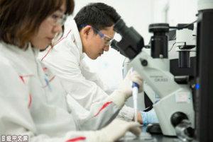 日本迈入「低学历化」?博士在日本没有前途吗?