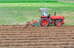 出人意料日本农民职灾死亡率高于建筑业