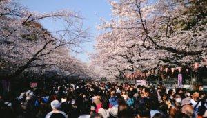 2020日本东京赏樱景点    适合大人小孩同乐的「上野恩赐公园」
