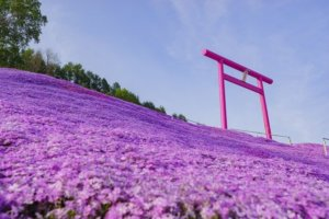 山津见神社╱北海道