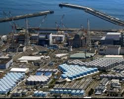 """日政府就福岛一核处理水公布报告 提出排放入海""""现实"""""""