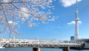 浅草—东京晴空塔过一座桥就到!最速捷径「隅田川桥梁步道桥」2020年4月开通