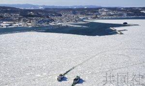 北海道网走迎来浮冰靠岸 海面宛如雪原