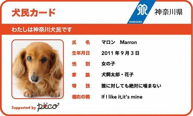 マイクロチップ 「犬民カード」 peco×神奈川県|うちの子マイクロチップ デビュー応援キャンペーンHPから引用
