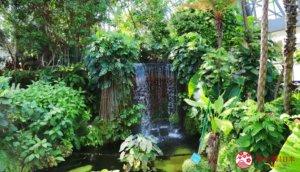 亲子游首选「梦之岛热带植物馆」,呼吸城市中的芬多精