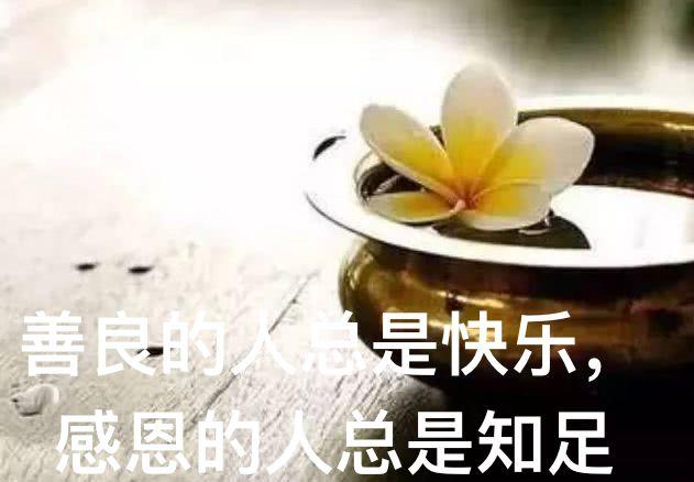善良的人总是快乐,感恩的人总是知足