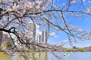 跑完惬意翘脚喝杯咖啡「上野公园」