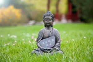 辨识出你本具的善良——你的佛性