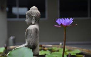 """""""我""""在佛教里的不同含义"""