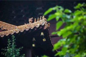 日本人说:鲁迅先生是深山中苦行的一位神佛