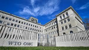 WTO因职员感染新冠病毒取消会议