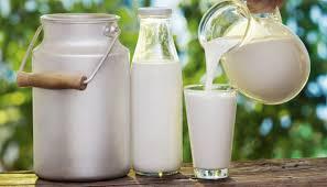 学校配餐奶大量滞销 日本乳制品企业谋求自救