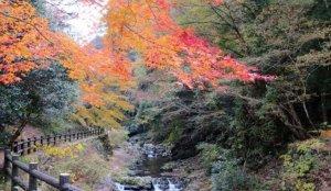必访的赞岐十景之一「三霞洞溪谷」