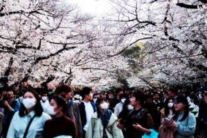 #东京封锁:小池的铁壁防疫?日本首都圈封城疑虑