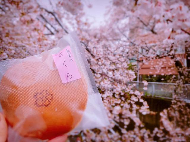 """今年も1年ぶりに""""開花""""、「道楽や」の「桜どら焼き」【連載:アキラの着目】"""