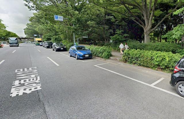 原宿代々木公園の道路