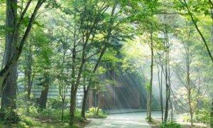 轻井泽高原教堂