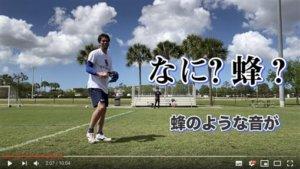 影/惊吓!前田健太拍片传授传球惨遭蜜蜂袭击