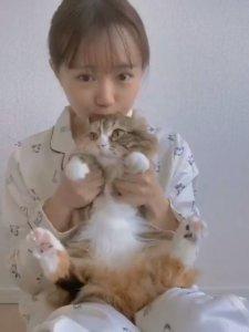 响应不出门!女声优「抓爱猫」大跳防疫舞网友全萌翻