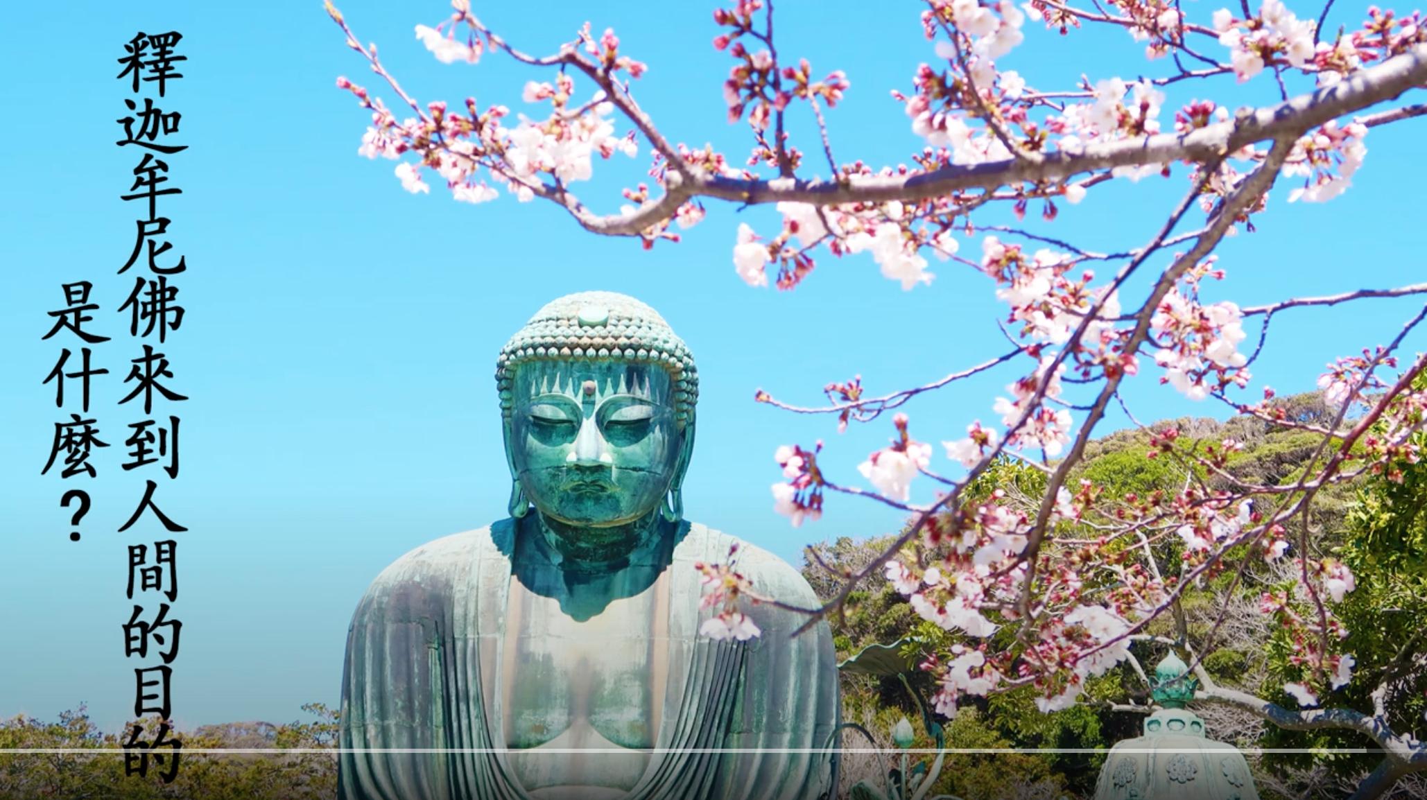 浄空大師為什麼哭了?怎樣才能不下地獄?浄空大師教給我們的秘絕是什麼?🌞現在大家因為疫情,不能去日本旅遊,那就看看浪漫櫻花裡的鎌倉大佛吧!給您及家人增添福報,增添幸福和平安!🌞