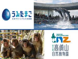 大分水族馆和动物园在网上发布动物视频