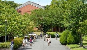 2004《Orange Days》:酸涩甜蜜的大学校园