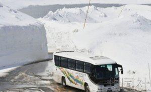 立山黑部阿尔卑斯路线通车 漫步大雪谷活动暂停