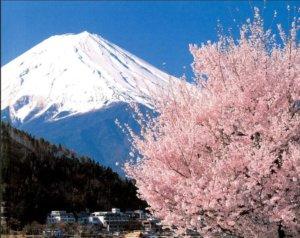 女生千万不要一个人去日本旅行,因为这里出行方式,你接受不了
