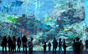 日本横滨海外首站北台湾最美桃园「Xpark」夏天开幕