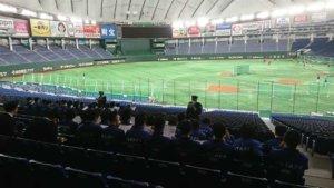 日本职业体育因新冠疫情损失约2747亿日元