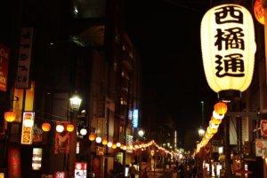 日本疫情延烧宫崎商家停业波及流浪猫饿肚子