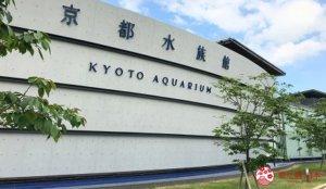 到水族馆感受海洋世界之美!