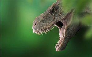 日本6岁男童发现恐龙图鉴出错出版社承诺将修订
