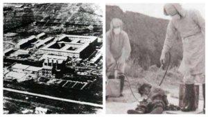 泯灭人性!日学者披露政府公文证实「731部队生产细菌」