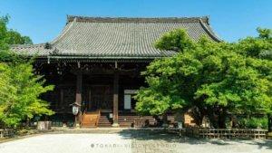京都初夏 | 久违的真如堂 期待深秋的红叶满园