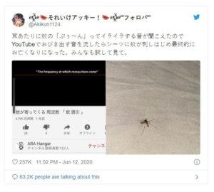 耳边嗡嗡叫好烦!网民实测「灭蚊大法」赞有用专家指出一盲点