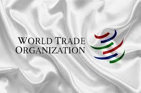 日加欧等WTO成员国通过声明要求确保贸易规则透明度