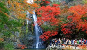 【阪急箕面站】大阪人气赏枫地点「箕面大瀑布」