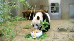 上野动物园发布大熊猫香香3岁生日特别视频