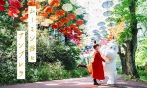 噜噜米主题公园2020联名活动–metsä彩色雨伞天空