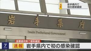 快讯:岩手首次确诊新冠病例 疫情蔓延至日本全国