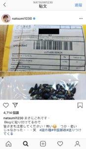 中国寄来的神秘种子也攻进日本滨田雅功老婆糊涂播种
