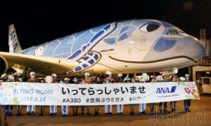 """话题:全日空A380""""海龟""""客机期盼重返天空"""
