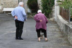 日本百岁以上老人首次超过8万人